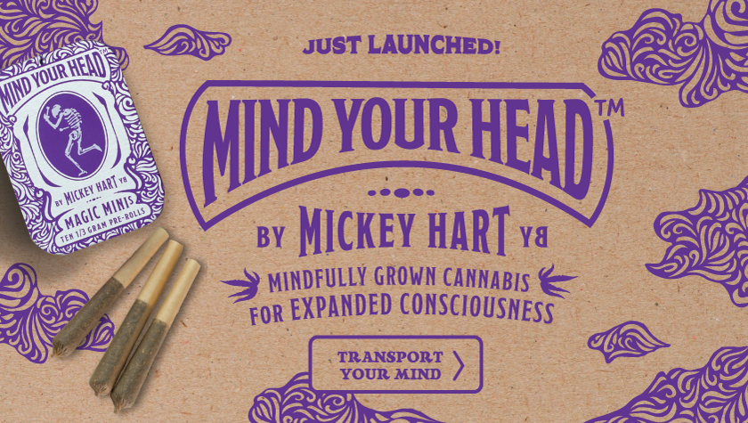 image of Mind Your Head social media banner