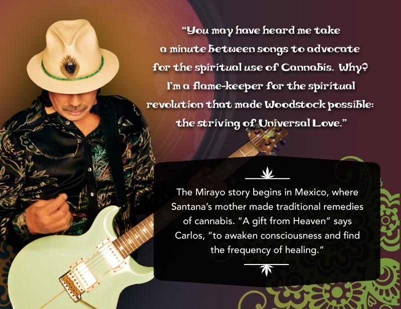 image of Mirayo web page